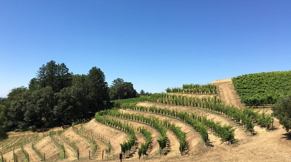 how to get to st helena california